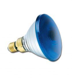 PAR38 240V 80W Blue E27
