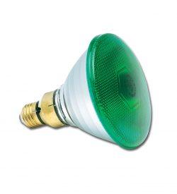 PAR38 240V 80W Green E27