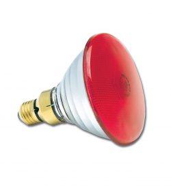 PAR38 240V 80W Red E27